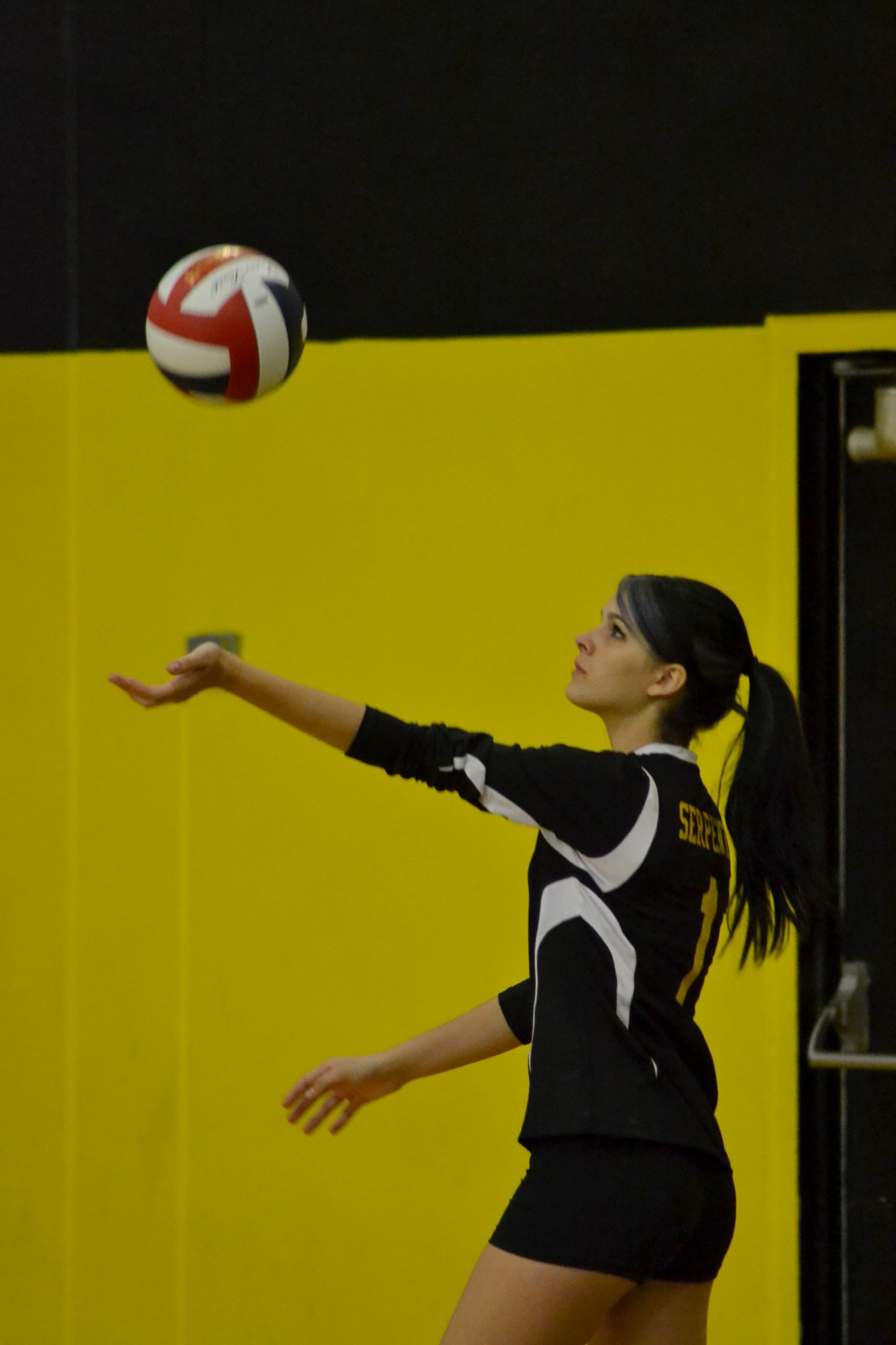 Lady Serpents come up short on Senior Night