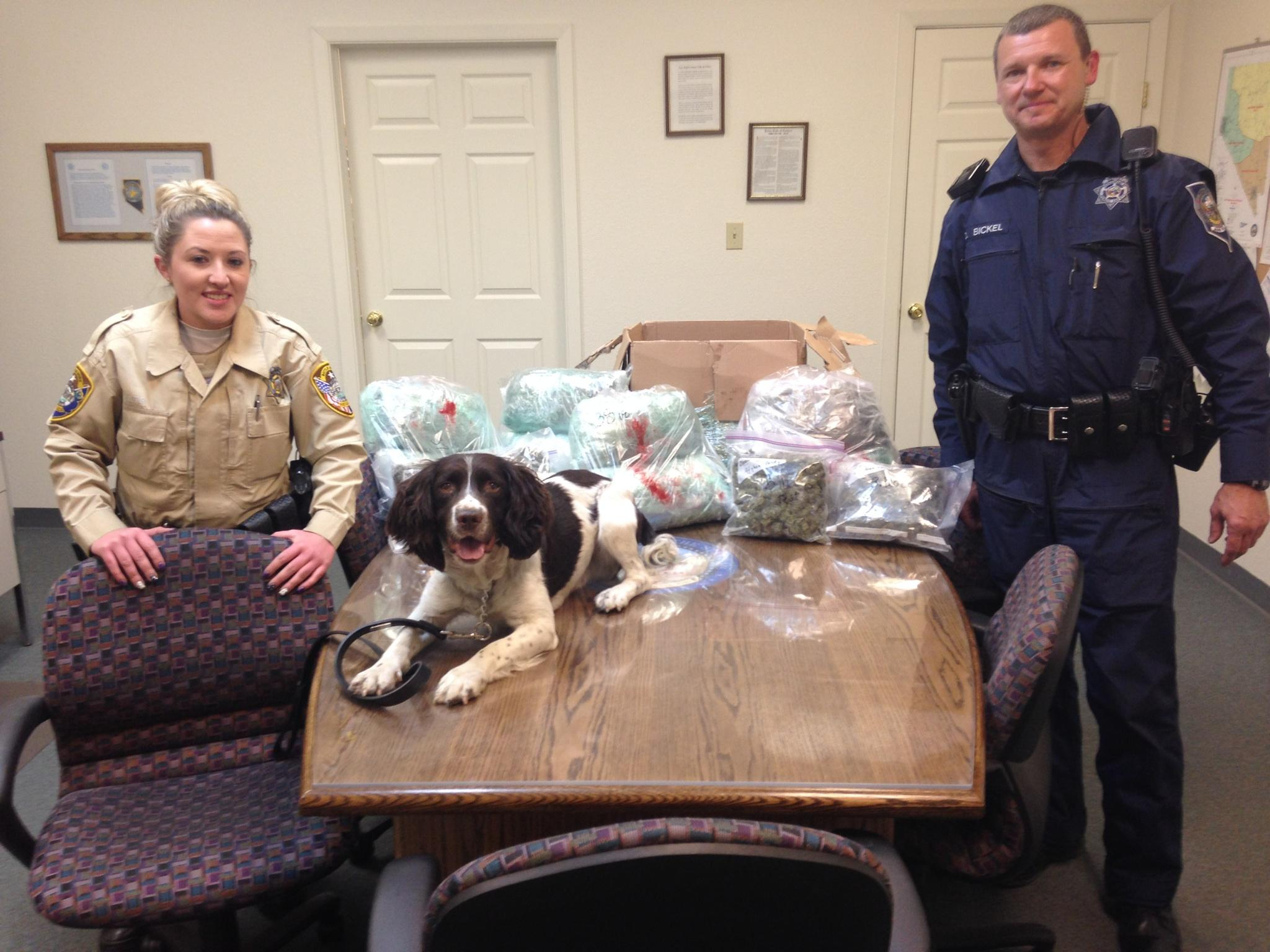 Man arrested in Hawthorne for transporting marijuana
