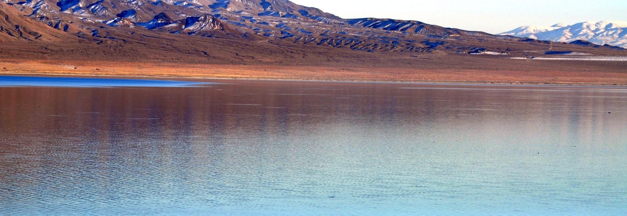 Walker Lake could benefit from turbine project