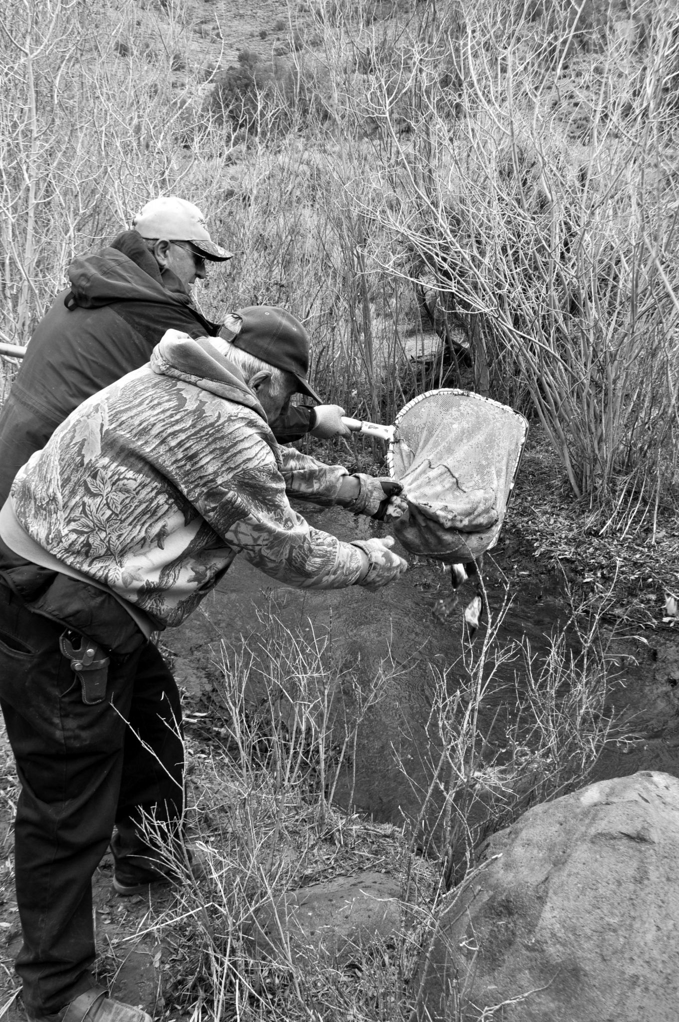 Local wildlife leaders stock Rough Creek