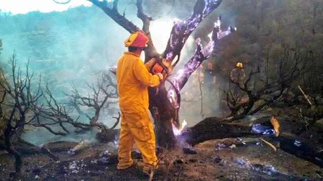 Lightning sparks several area fires