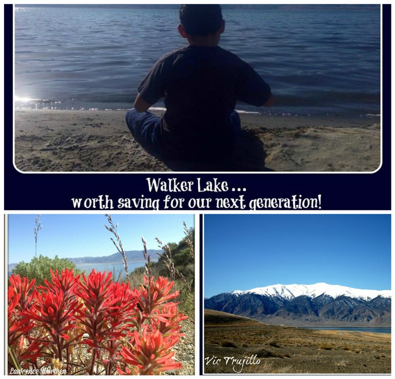 Walker Lake calendar on sale