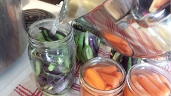 UNCE 'Grow Your Own' Classes Return in September