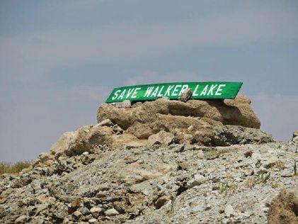 "Beverly Orozco -  ""Save Walker Lake"""