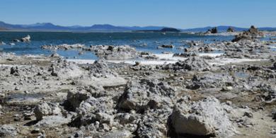 Beverly Orozco - Tufa formations at Mono Lake, Calif.