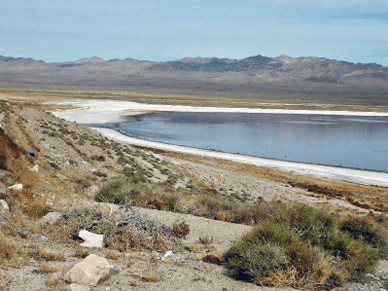 Sheri Samson White sand once covered by water is becoming more exposed on the north and south side of Walker Lake.