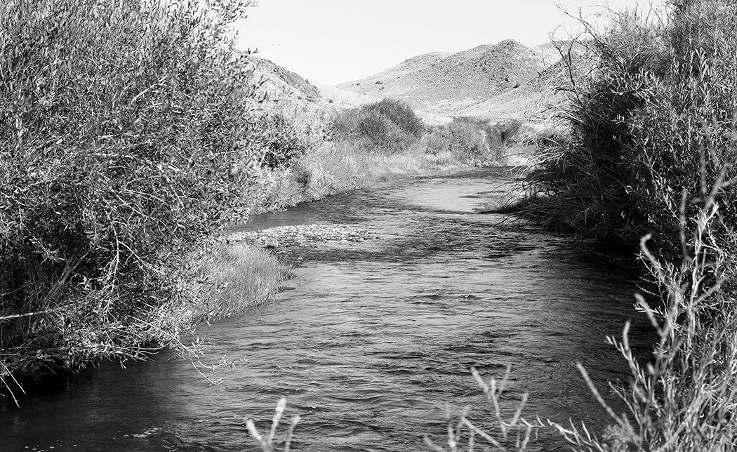 Nevada receives donation to establish new state park along Walker River