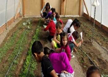 Schurz Elementary Students Plant Garden in Hoop House
