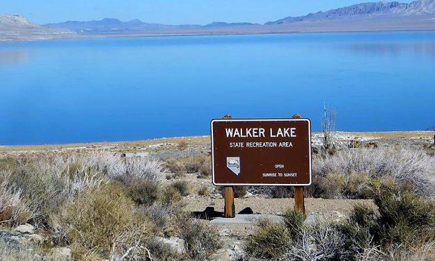 Commissioners Get Update on Walker Lake Water Battle