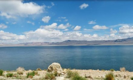 Major milestone met in effort to restore Walker Lake