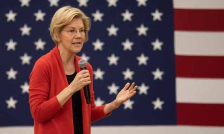 Warren: Democrats' message must be more than 'not-Trump'