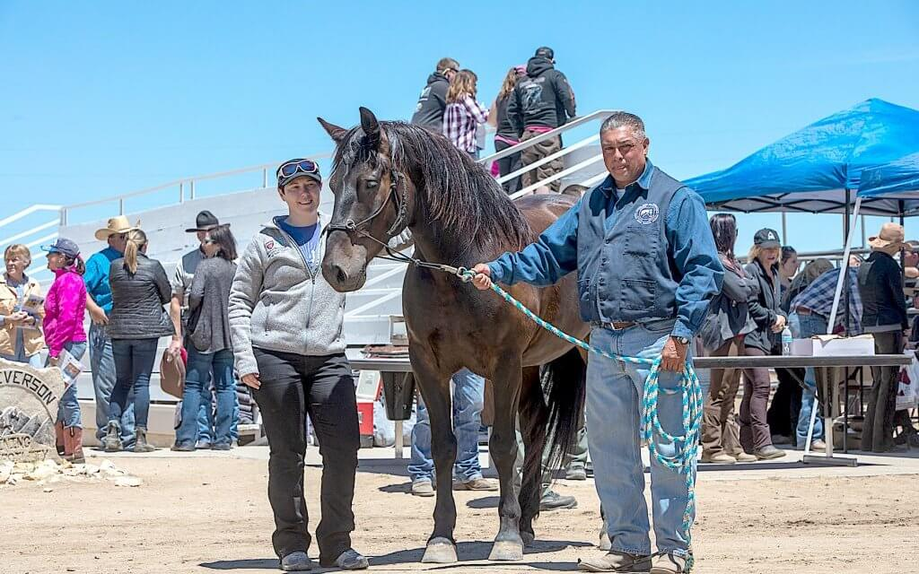 Pair of saddle-trained wild burros from Mineral County adopted