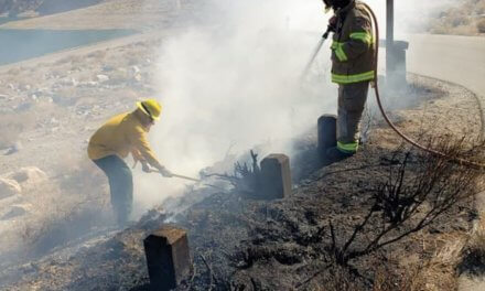 Fireworks Cause Small Brush Fire Near Walker Lake