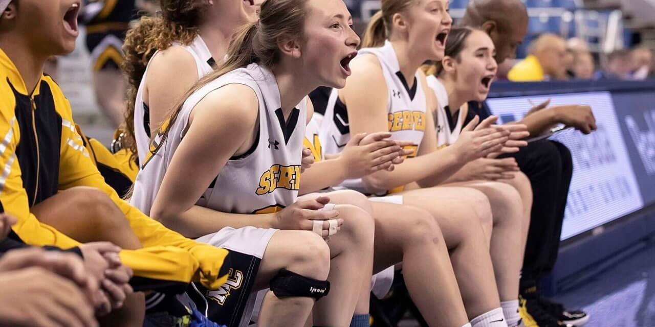 Mineral County Girls Fall in State Title Game
